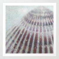 seashell Art Prints featuring SEASHELL by Christina Lynn Williams