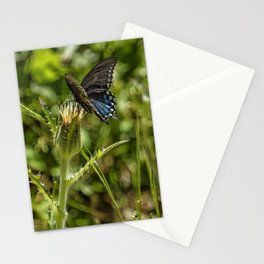 Black Swallowtail No. 2 Stationery Cards
