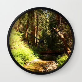 A Muir Woods Scene Wall Clock