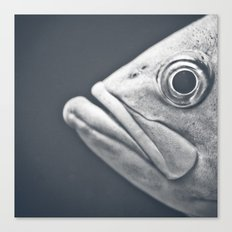 Eye There Canvas Print