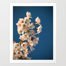 Awesome Blossom. Art Print