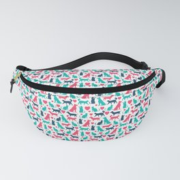 0077 Fanny Pack