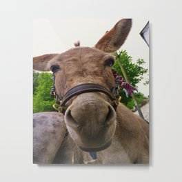 CUTE DONKEY FACE Metal Print