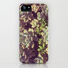 Small Succulents iPhone Case