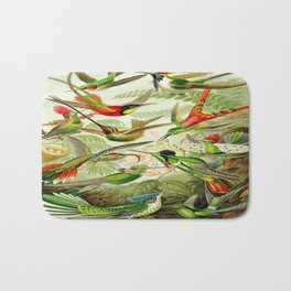 Kunstformen der Natur (Art Forms in Nature)a book of lithographic and halftones. Hummingbirds Bath Mat