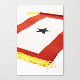 Blue Star Flag Canvas Print