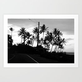 Tropical Darkroom #261 Art Print