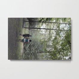 beach lake  Metal Print