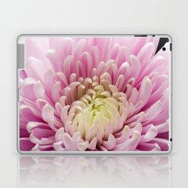 Pink Chrysanthemum In Bloom Laptop & iPad Skin