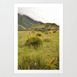 Grassy Landscape Art Print
