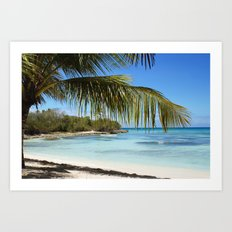 Tropical Island Beach palm tree Art Print