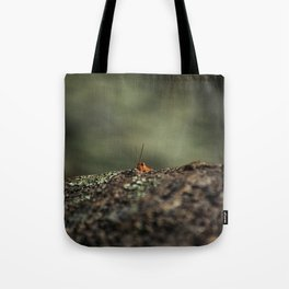 The Cliffhanger Tote Bag