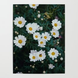 FLOWER SPACE Poster