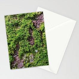 Transcend, Glacier National Park Stationery Cards