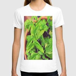 Summer Basil T-shirt