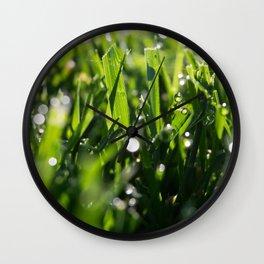Morning Dew 3 Wall Clock