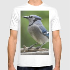 A Northern Blue Jay White Mens Fitted Tee MEDIUM