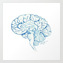 Brain in pencil Art Print