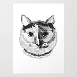 Phoenix the Queen Cat Art Print