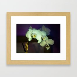 Unterwegs_1576 Framed Art Print