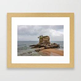 Camel Beach Landscape Framed Art Print