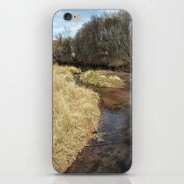 Grass Alongside Oak Creek iPhone Skin