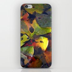 autumn lily pads IV iPhone & iPod Skin