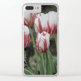 Spring Time Tulips Fine Art Photography Clear iPhone Case