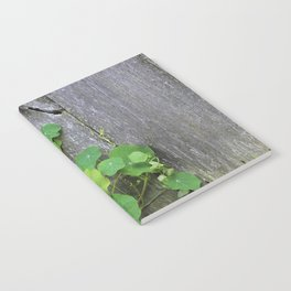 The Garden Wall Notebook