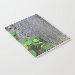 The Garden Wall Notebook