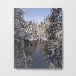 Muskoka River Metal Print