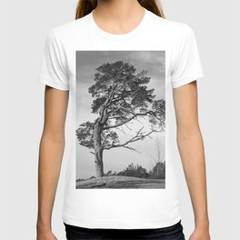 Lonely pine on a hill T-shirt