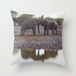 Reflections 3 Throw Pillow