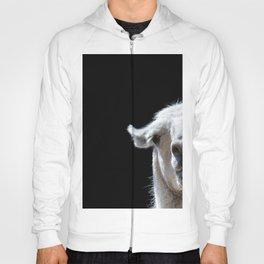 Stupid Looking Animal Goofy Llama Funny Hoody