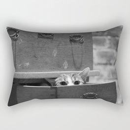 Cat in the closet Rectangular Pillow