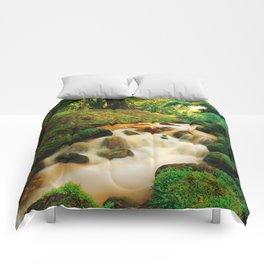Parque Terra Nostra Comforters