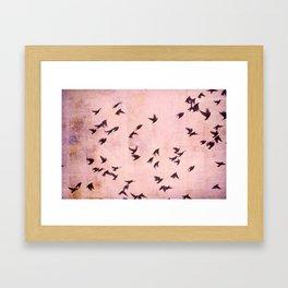 Flying South 2 Framed Art Print