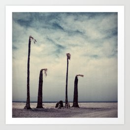 Salton Sea, California Art Print