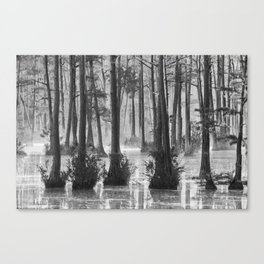 Adams Mill Pond 39 B&W Canvas Print