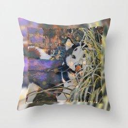 Husky Dream Throw Pillow