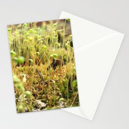 Moss Sporophytes Stationery Cards