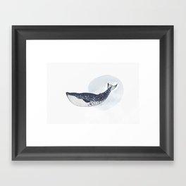 BLUE WHALE Framed Art Print