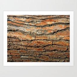 Bark 05 Red Brown Art Print