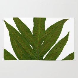 Tropical Fern Botanical Rug
