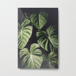 Monstera America Metal Print