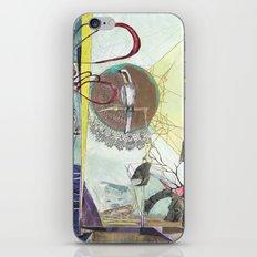 Exploration: Ornithology iPhone & iPod Skin