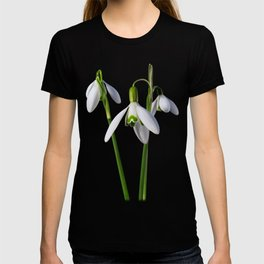 Spring Springs Eternal T-shirt