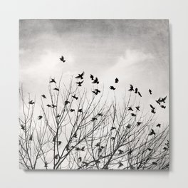 Black and White Birds Tree Photography, Grey Bird Trees Flying, Gray Nature Branches, Flock Fly Sky Metal Print