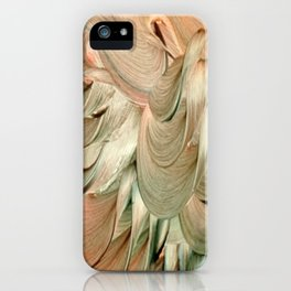 Ishim iPhone Case