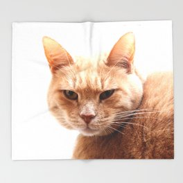 Red cat watching Throw Blanket